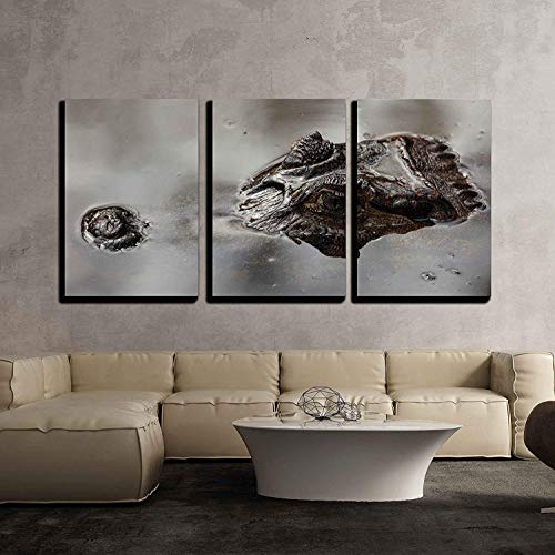 (wall26 - 3 Piece Canvas Wall Art - Alligator - Modern Home Decor Stretched and Framed Ready to Hang - 16
