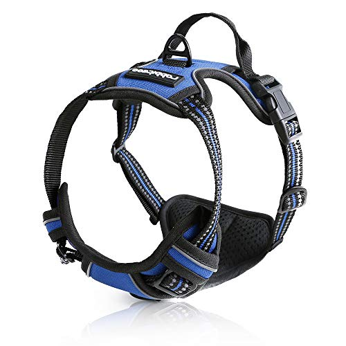 Rabbitgoo Dog Harness No-Pull Pet Harness Adjustable Outdoor Pet Vest 3M Reflective Pet Vest Harness for Large Breed (Blue, L) (Head Dog Blue)