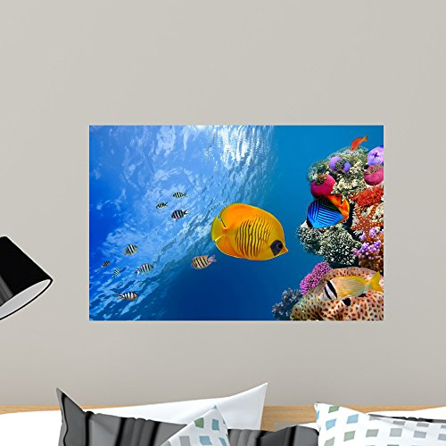 Wallmonkeys FOT-34886874-24 WM53773 Masked Butterfly Fish Peel and Stick Wall Decals (24 in W x 16 in H), Medium ()