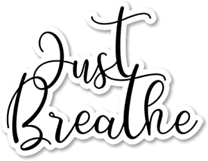 IT'S A SKIN Just Breathe | Vinyl Sticker Decal for Laptop Tumbler Car Notebook Window or Wall | Funny Novelty Decal