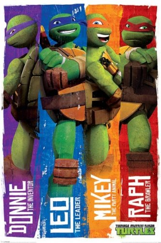 Amazon.com: Teenage Mutant Ninja Turtles - TV Show Poster ...