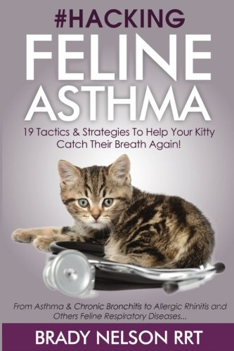 hacking-feline-asthma-19-tactics-to-help-your-kitty-catch-their-breath-again-chronic-bronchitis-alle