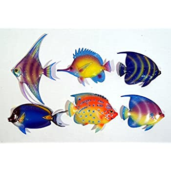 Tropical Fish Wall Hanging Blue Twenty Nine States Wall Art