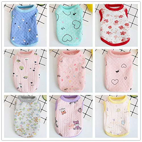 FidgetKute XXXS/XXS/XS Teacup Dog Clothes for Cat Small Puppy Chihuahua Pet Apparel Summer Girl Color XXS