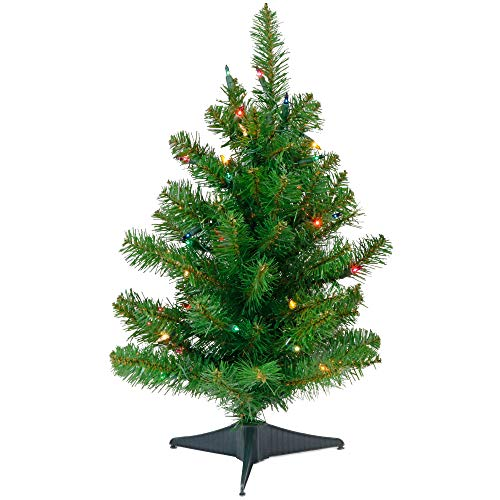 Tree Happy Christmas Holidays - Special Happy Corp LTD Canadian Artificial Prelit Tabletop Christmas Tree, 2-Feet, Multi-Color Lights