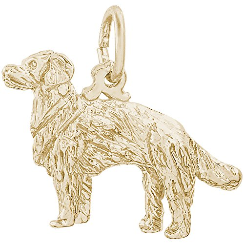 Rembrandt Sterling Silver Two-Tone 3D Golden Retriever Charm on Sterling Silver Rope Necklace, 18