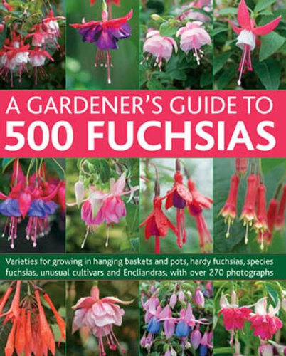 Hanging Blu (A Gardener's Guide To 500 Fuchsias: Varieties for growing in hanging baskets and pots, hardy fuchsias, unusual cultivars and Encliandras, with over 270 photographs)