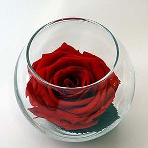 Luxe Bloom Single Lasting Luxury Rose - Crimson