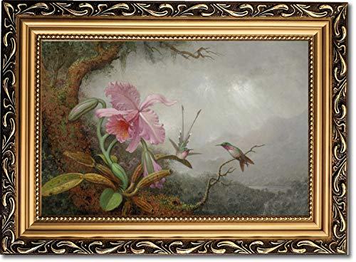 Framed Canvas Print - Hummingbirds and Orchids - by Martin Johnson Heade ()