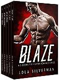 Bargain eBook - Blaze