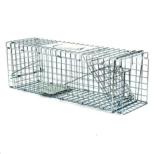 Display4top Pro-Quality Humane Live Animal Trap Cage,Catch and Release Rabbits,Squirrel, Raccoon and Similar Sized (32x11x12.5 - Trap Cage Raccoon
