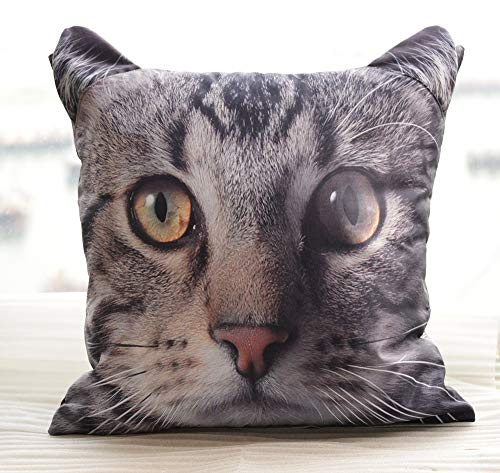 Domestic Tabby Cat Pillow Case Cushion Cover 18 x 18 inches