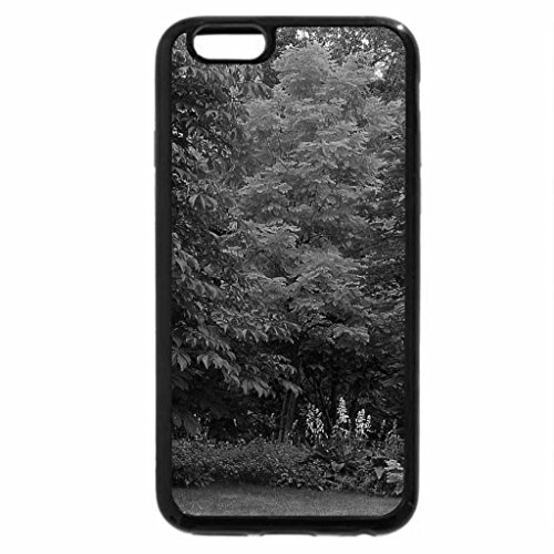 iPhone 6S Case, iPhone 6 Case (Black & White) - bench, park, trees