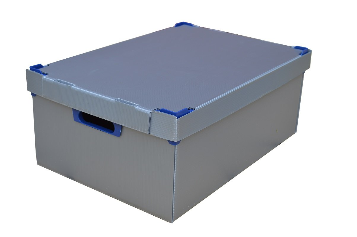 cristal altura m/áxima 195/mm 24/celdas Copa de vino de almacenamiento /cristaler/ía caja de almacenaje/ caja ref /Glassjacks 1 Tama/ño mediano Copa de vino/ cristal Max Ancho 81/mm