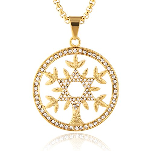- HZMAN 18k Gold Plated Cz Inlay Tree of life Stainless Steel Pendant Necklace Success and Protection Lucky (Star of David)