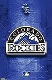 Colorado Rockies- Blueprint Logo Poster 22 x 34in