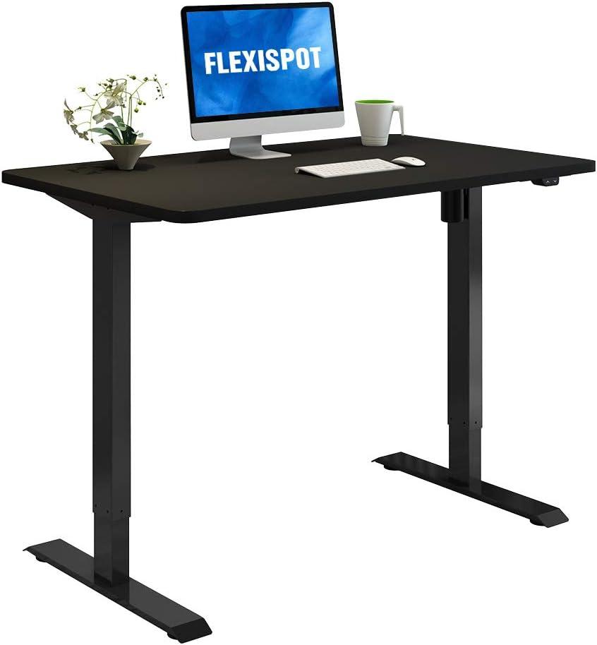 Flexispot Standing Desk, 48 x 24 Inches Height Adjustable Desk, Electric Sit Stand Desk Home Office Desks Whole-Piece Desk Board (Black Frame + 48 in Black Table Top)