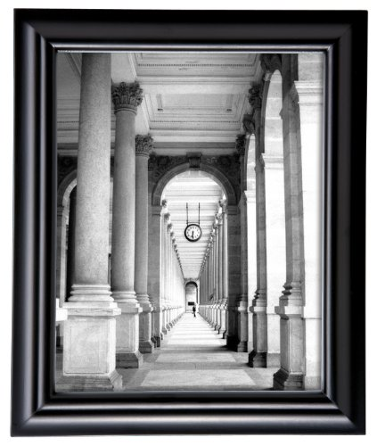 (MCS 16x20 Inch Swan Solid Wood Frame, Black)