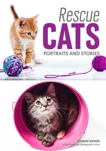 Rescue Cats: Portraits & Stories