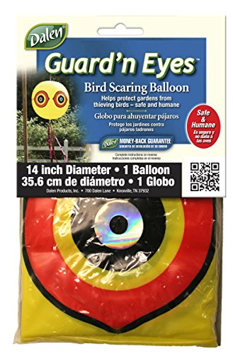Bird Scaring Balloon (Gardeneer By Dalen Guard'n Eyes Bird Scaring Scarecrow Balloon)
