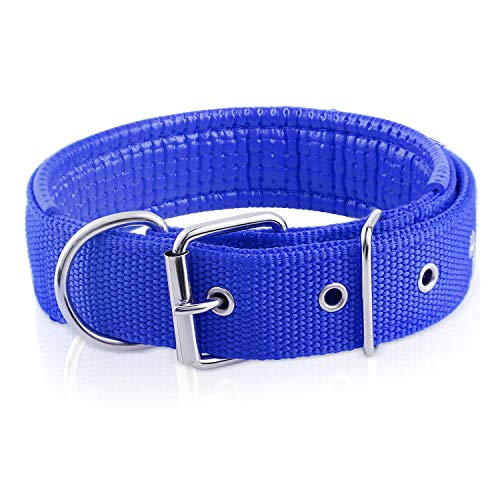 Cutypet Basic Classic Nylon Adjustable Pet Dog Collars for Cats Puppy Small Medium Large Dogs, Training Collar, Premier…