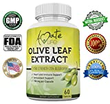 Amate Life Olive Leaf Extract Capsules 750mg – Antioxidant Supplement for Cardiovascular, Blood Pressure & Heart Health – Immune System Booster for Men & Women – 20% Oleuropein – 60 Capsules For Sale