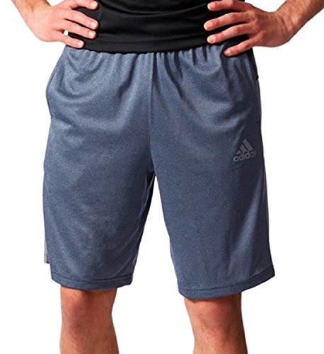 Adidas Mens Climacool Shorts (Medium, Black)