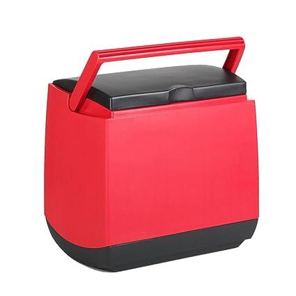 Amazon.es: LJ Refrigerador del coche Refrigerador caliente de la ...