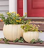 Pumpkin Planters, Set of 2 - Small 9'' Dia. x 6.75''H; Large 13.75'' Dia. x 10.5''H - White