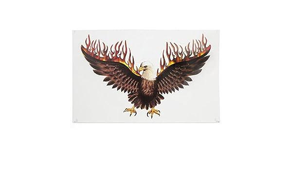 Amazon.com: eDealMax Flying Eagle Imprimir Stick-gráfico en la motocicleta de la etiqueta engomada del coche del Cuerpo: Automotive