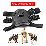 Best GoPro for dog - Dog Harness, Back Mount for GoPro Hero 4/3+/3/2/1 Review