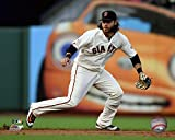 "Brandon Crawford San Francisco Giants 2016 MLB Action Photo (Size: 8"" x 10"")"