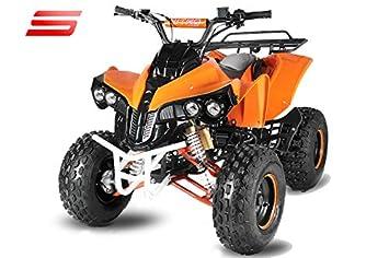 125cc Quad Quad de niño ATV Guerrero 3G8 Semi automático con Marcha atrás: Amazon.es: Coche y moto