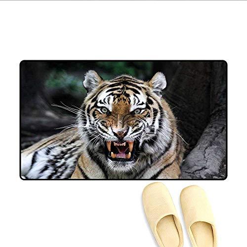 Bath Mat Tiger Face with Roaring Wildlife Safari Savannah Animal Nature Zoo Photo Print Floor Mat Pattern Multicolor 16