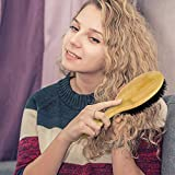 BOMEIYI 100% Boar Bristle Hair Brush Set,Set for