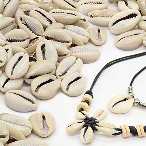 150 Genuine Cowrie Shells for Jewelry Making and Home Décor Plus 2 Free Necklaces, Natural Smooth Cut Oval Ocean Beach Spiral Sea Shells, Puka Shell Beads for Necklaces & Bracelets