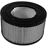 Enviracaire 20500 HEPA Replacement Filter