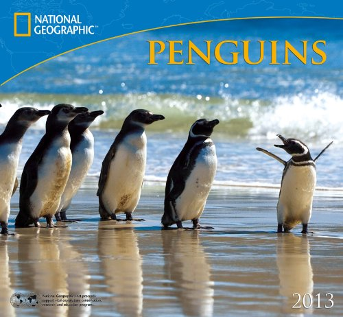 National Geographic Penguins 2013 Calendar Zebra Publishing Corp.