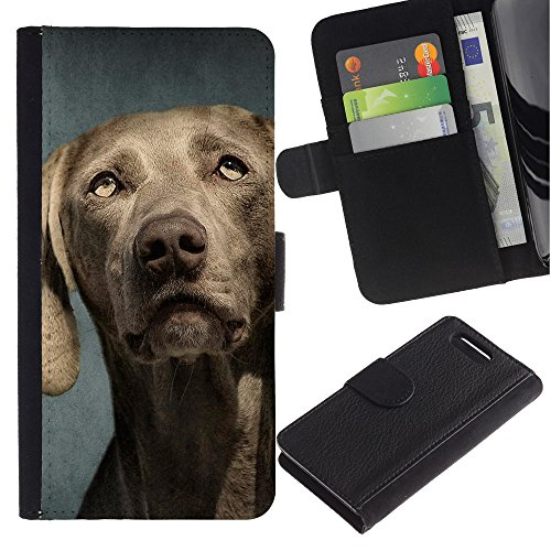 LASTONE PHONE CASE / Lujo Billetera de Cuero Caso del tirón Titular de la tarjeta Flip Carcasa Funda para Sony Xperia Z1 Compact D5503 / Weimaraner Portrait Muzzle Grey Dog