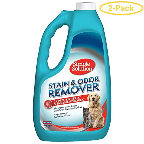 Stain / Odor Remover [Set of 2] Size: 1 Gallon by Simple Solution