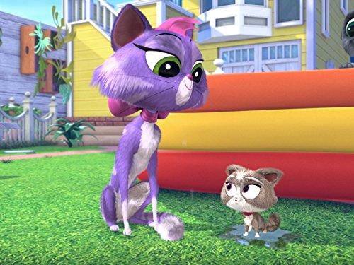 (Hissy's Kitty/Polly Wants a Pug)