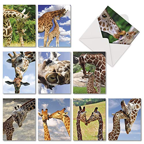 - Kissing Giraffes - 10 Assorted All Occasion Blank Cards with Envelope (4 x 5.12 Inch) - Adorable Wildlife Boxed Greeting Card Set - Romantic Kiss All-Occasion Stationery Notecard Pack AM6843OCB-B1x10