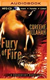 Fury of Fire (Dragonfury Series)