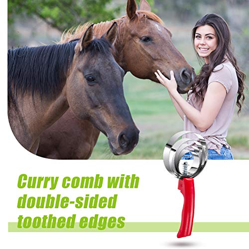 2 Pieces 4 Ring Curry Comb Reversible Metal Horse Curry Comb Stainless Steel Dog Spring Curry Comb with Comfortable Grip for Grooming Shedding Horse Sheep and Pet