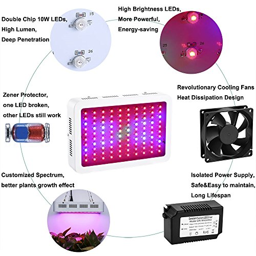Latest 1000W LED Grow Light Full Spectrum for Greenhouse Hydroponic Indoor Plants Seeding/Growing/Flowering with Double Chips Growing Bulbs (White) Hydroponic System 2