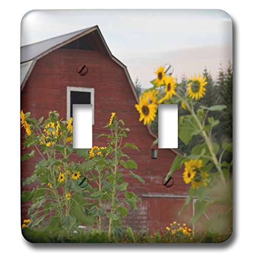 Danita Delimont - Canada - Canada, Vancouver Island. Sunflowers in front of a red barn, Glenora - Light Switch Covers - double toggle switch - In Vancouver Outlets