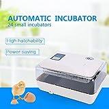 Yosoo LCD Incubator hatched hatching machine For Quail, Chickens, Ducks, Pigeons Eggs