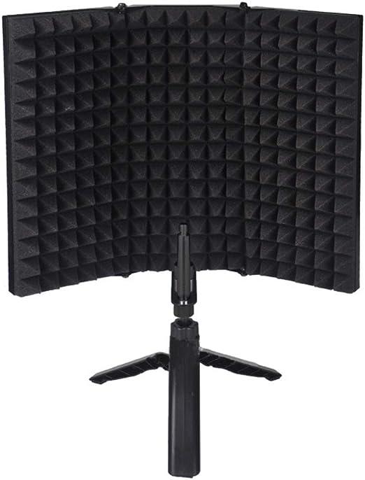 Pandiki Aislamiento del micrófono Escudo micrófonos para Estudio ...