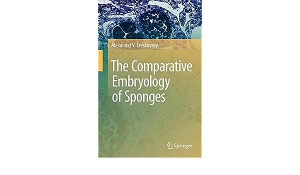 the comparative embryology of sponges ereskovsky alex ander v