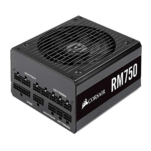 CORSAIR RM Series, RM750, 750 Watt, 80+ Gold Certified, Fully Modular Power Supply, Microsoft Modern Standby (Best Power Supply 2019)